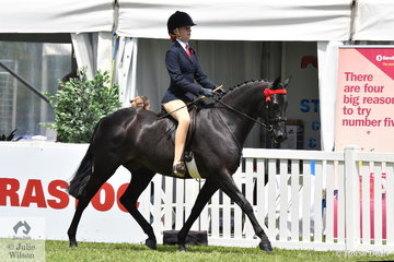 Zoe Weinberg took fifth place in teh Peter Gahan Trophy riding class.