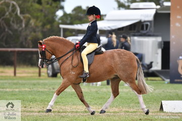 Taylor Shute, pictured riding, 'Owendale Black Thorn' took second place in the class for Rider Under 9 Years.