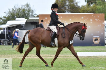 Briony Randle rode Judy Ivory's, 'KP Simply Exquisite' to claim the 2019 Large Galloway Reserve Championship.