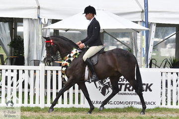 Greg Mickan made it a Newcomer/Open Double with Fiona Kittson-Walsh's, 'Smartini' to claim the Barastoc 50th Anniversary Celebration Show Large Galloway Championship.