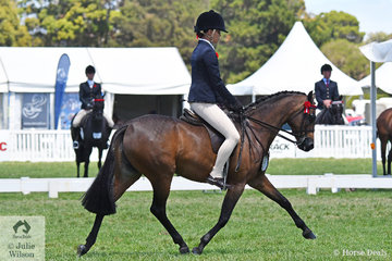 Tahlia Young rode Greg Gerry's home bred, 'Whitmere Ethereal' to claim the  Barastoc 50th Celebration Anniversary Show Medium Pony Championship.