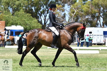Jessica Dertell pictured aboard Kate Dertell's Small Hack, 'Fearless FF' was earlier in the afternoon declared 2019 Barastoc Champion Rider 12, 13 and 14 Years.