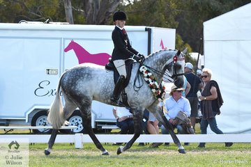 Yarra Valley teenager, Kaitlin Labahn-Meyland rode Michelle Labahn's beautiful, 'Rolex II' to claim the 2019 Barastoc 50th Anniversary Celebration Show Large Hack Championship and close proceedings this year.