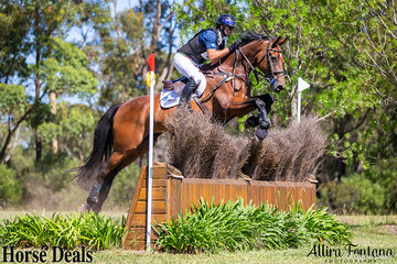 Stuart Tinney and Sir Pepper making cross country look like a walk in the park.