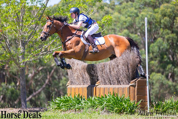 Altered Boy easily clearing the YES Events Ditch Palisade with Lachlan Blair in the saddle.