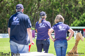 The Wallaby Hill team keeping an eye on the show jumping course.