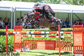 """When you see James Arkins on the draw, you know something amazing is to come! Riding """"Pongo"""" aka Glenhill Bounce, they had a fast round with only one rail down claiming 5th place."""
