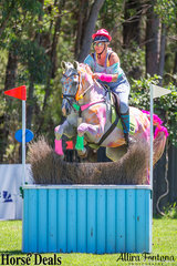 There were a lot of coulourful horses in the Eventers vs Show Jumpers class, pictured is Stephanie Bender and Pluto Mio clearing one of the cross country jumps on course.