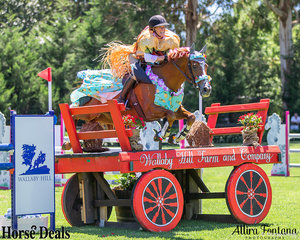 Is that a burger riding a horse? No, it's Erin Roddy riding Gold. Just look at that smile!