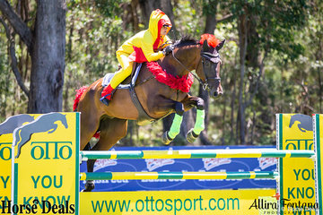 Katrina Silk riding Dunrostan is no chicken when it comes to jumping the OTTO jump.