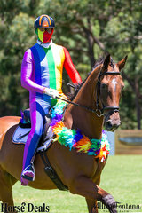 Who is that? It looks like Shaun Dillion riding Sovereigns Cessann…