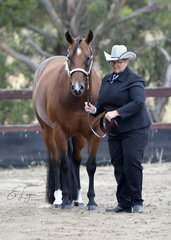 LEEANNE HUGHES SHOWING CLAIRVAUX MODEL AT AT HALTER