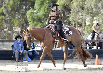SPRINGVALE GOLDEN N RULE RIDDEN BY GEORGIA WEAVELL IN THE TRAIL CLASS