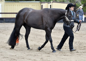 TERESA ROBINSON SHOWING DOIN IT DOWNUNDER IN THEH ALTER CLASS
