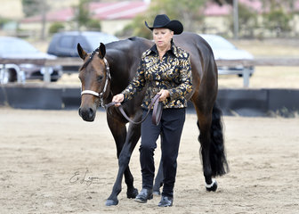 THE IMPULSABLE DREAM SHOWN BY SYLVIA KIDSON IN THE SHOWMANSHIP CLASS