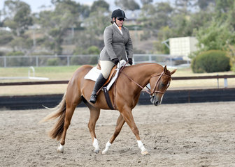 ZIPPED IN RHYTHM RIDDEN BY MICHELLE PHILLIPS IN THE HACK CLASSES