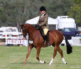 """Libby Greshner & her Champion Newcomer & Champion Preliminary Show Hunter Galloway """"Beauparc Magic Mike""""."""