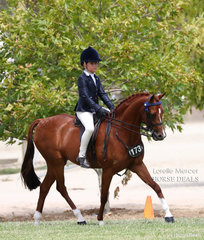 Zali Mills working out for a Top 10 placing in the Rider 6 & under 9 years event.