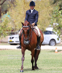 Reserve Champion Rider 30 years & over went to Reece Lawson.