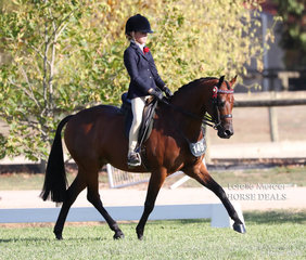 Shaleigh Joblin placed Top 10 in the Rider 9 years & under 12 years event.