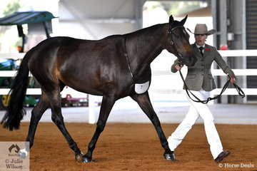 Kate Schoen is pictured with her, 'Orlanga KC Coconut' that took second place in the class for Led Three Year Old Filly.