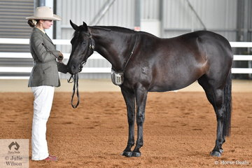 Sally Beer did the honours with the Beer Family's mare, 'Parra Reizig' that was declared Champion Led Four Year Old.