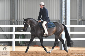 Aaron Todd rode his home bred, 'Todd's Topdeck' to win the class for Novice Hack on the first day of the 2019 Victorian ASH State Championships conducted at the Elmore Equestrian Park.