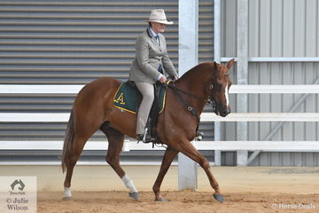 Well known ans successful Stock Horse competitor, Fiona Beer rode Cassie Lea's, 'Waymere Oaks Legend' to fourth place in the class for Hack Gelding Five Years and Over, Not Exceeding 15hh.'