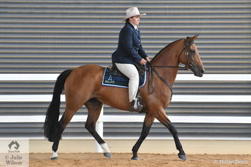 Hayley Hinchcliffe's, 'Doublehaich Romantic Jewel' is pictured during the class for Hack Mare Five years and Over Over 15hh.
