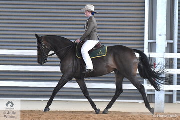 Sophie Howard rode her, 'Todds Kassandra' to win the class for Hack Mare Five Years and Over Over 15hh.