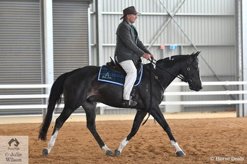 Ian Gladman rode his colourful and good going, 'Coleslea Cash' to take second place in the class for Four Year Old Male Hack.