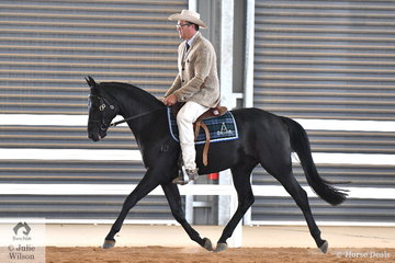 David Nash rode his and Emma Nash's, 'Hardal Uno Luna' to win the class for Four Year Old Male Hack and go on to take out the  Junior Hack Championship and later in the evening the Runner Up Supreme Exhibit Under saddle.