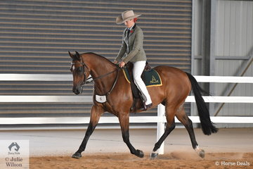 Kate Schoen rode her beautiful Supreme Led, 'Orlanga Popcorn' to take second place in the EJ ans Co Equestrian Jewlery Hack Challenge and fourth place in the Open Challenge.