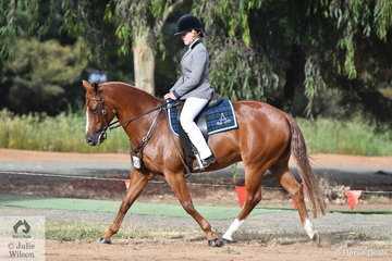 Cassie Lea rode her, 'Waymere Oaks Legend' to take third place in the class for Junior Hack Rider 13 AU 18 Years. Cassie went on to take out the Elastan Park High Point Junior 13 AU 18 Years award.