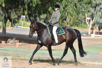 What a show. Last night 17 year old, Olivia Henzen claimed the  Marsh Carney Supreme Ridden Exhibit award and today they again outrode their older peers again to claim the Terragan and Tambeau Stud Open Challenge riding, 'Bushdrift Coolplay'.