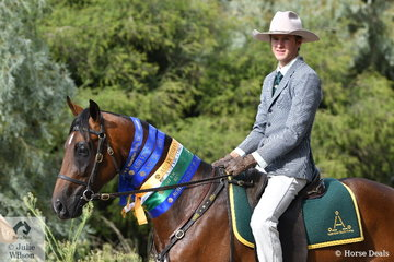 Brad Daunt rode his , 'Notus Northern Icon' (Cloverleaf Tradition/Notus Tenacity) to take second place in the Two Year Old Futurity on day two of the 2019 Victorian ASH State Championships conducted at the Elmore Equestrian Park.