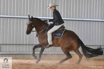 Tia Andrews had a great show. Yesterday she rode her, 'Waymere Oaks Enterprise' to win the ASHLA class and today won the EJ and Co Equestrian Jewellery Hack Challenge and they are pictured on their way to third place in the Terragen and Tambeau Studs Open Challenge.