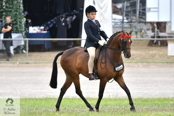 Tex Flack rode well to win the class for Boy Rider 11 AU 13 Years on the first day of horse competition at the popular 2019 ACTewAGL Royal Canberra Show.