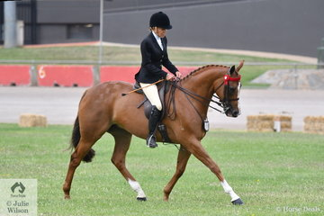 Francesca Christie rode her beautiful, 'SLM Pretty Woman' to take fourth place in the class for Novice Hack 15-15.2hh first up on day one of the 2019 ACTewAGL Royal Canberra Show.