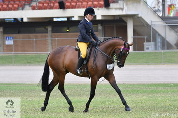 Successful NSW showing rider, Sandra Henry rode her own and Alan Henry's, 'Mcaurthur Park Hot Topic' to take second place in the class for Novice Hack 15-15.2hh.