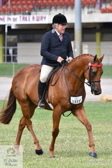 Dale Plumb rode his own, 'DP Boulevard' to win the class for Novice Hack 15.2-16hh.