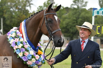 A pleased Andrew Hunt from South Australia did the honours with the Argyl Stud and Julie Payne nomination, 'Roxleigh Frederica' to claim the Led Show Hunter Horse Championship. Later in the day Charlie Hunt rode 'Roxleigh Frederica'  to win the 16-16.2 hh open show hunter.