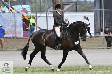 Syenna Vasilopoulos rode her own and the Universal Stables impressive nomination, 'Hollands Bend Royal Consort' to win the class for Novice Show Hunter Over 16hh.