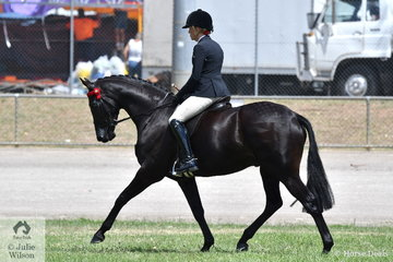 Melanie Burns rode the PBM Show Team's Barastoc Champion Newcomer Small Hack,' 'KT Song N Dance' to win the class for Novice Hack 15-15.2hh