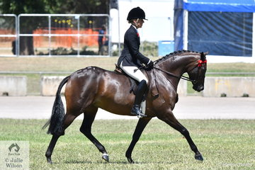 Margot Haynes rode the Haynes, Quayle and Andrea Shaw nomination, 'Westgrove Pageant Material' to win the class for Novice Heavyweight 14.2-15hh.