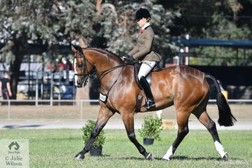 Alannah Richards rode her own and the Lawrie Group's nomination, 'France' to win the class for Open Show Hunter Over 16.2hh. The successful Fisherman's Friend Gelding went on to take out the Show Hunter Horse Championship.