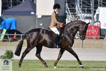 Young Victorian rider, Brynie Lee rode her own and very successful, 'SLM Valentino' to take second place in the strong class for Open Show Hunter 15.2-16hh and won the large class for Ladies Show Hunter.