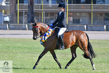 Sarah McMaster rode her, 'Beauparc Dreams' to claim the Ridden Arabian Derivative Ridden Championship.