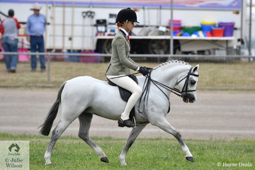 A busy Ebonie Lee rode Mackenzie Slater's, 'Kingfisher Park Zac' to win the class for Novice Show Hunter Pony N.E 12hh and go on to claim the Best Novice Small Show Hunter Pony award.