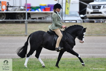 Vanessa Galloway-Smith's charming, 'Bamborough Snigger' took second place in the class for Novice Show Hunter Pony N.E. 12hh.